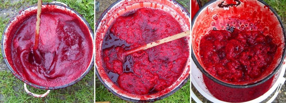 A vér tisztításának menete