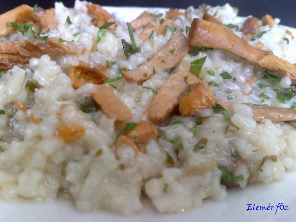 Rókagombás rizs frissen készítve